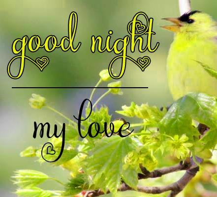 Free good night Images 73