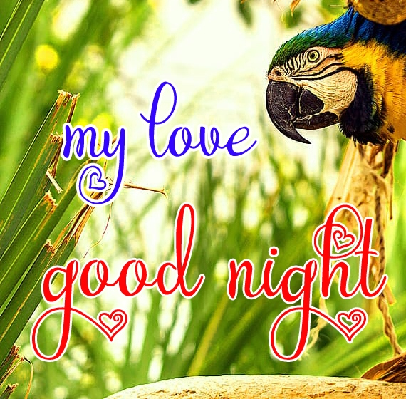 Free good night Images 88