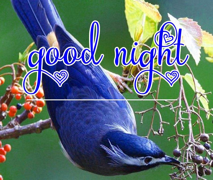 Free good night Images 97