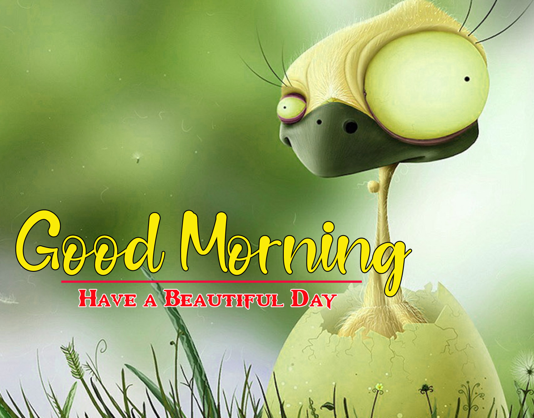 Funny Good Morning Wallpaper 1