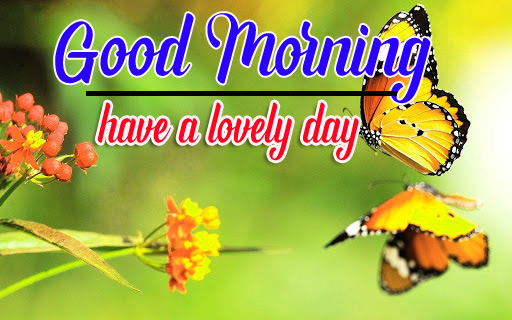 Free Good Morning Wishes