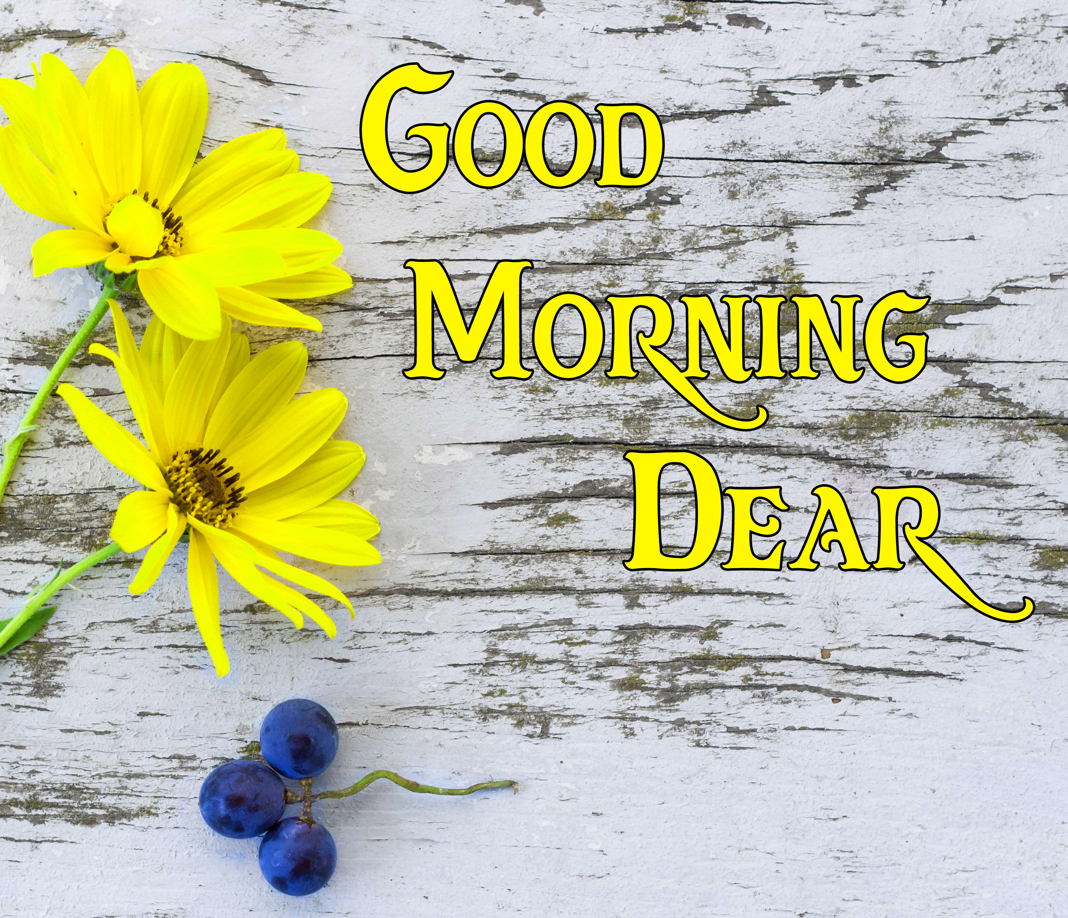 Good Morning Pics 123