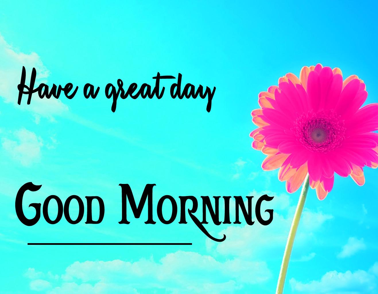 Good Morning Pics 48
