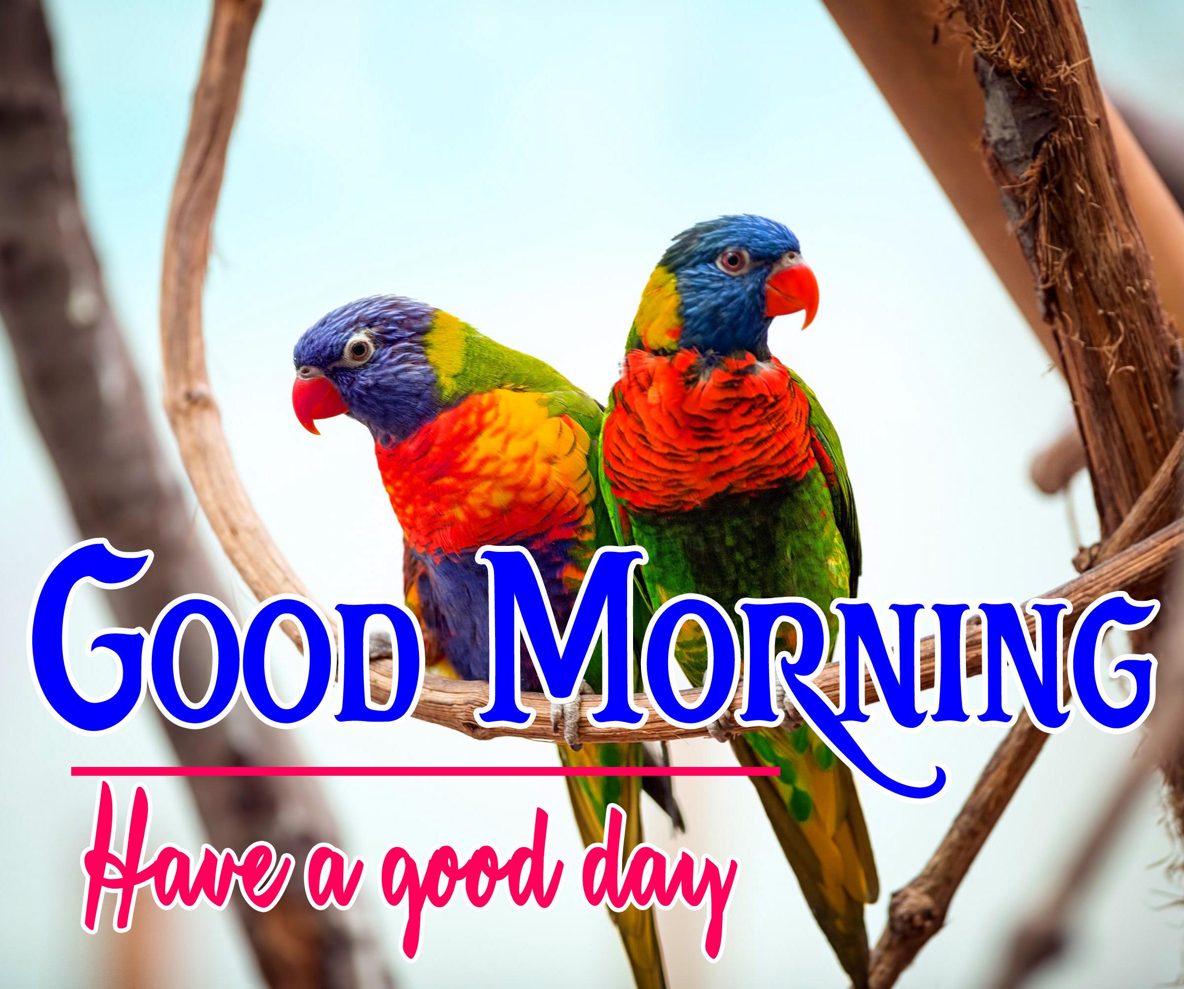 Good Morning Pics 57