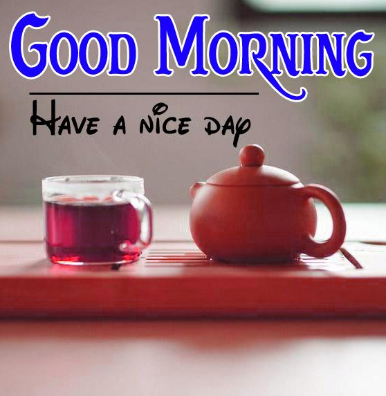 Good Morning Pics 73