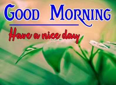 Good Morning Pics 99