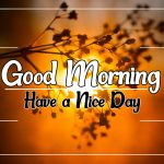 Good Morning Wallpaper Download 63