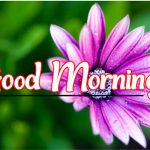 Good Morning Wallpaper Download 70