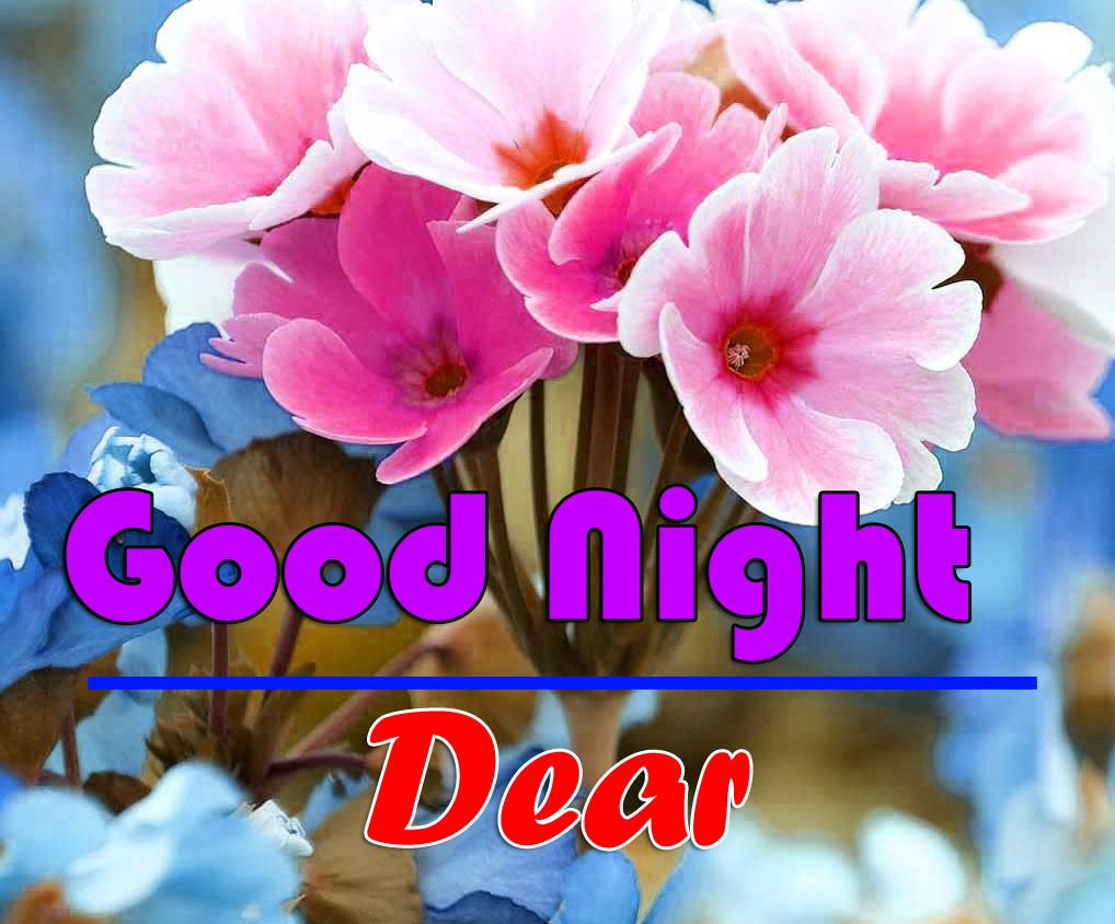 Good Night photo 1 1