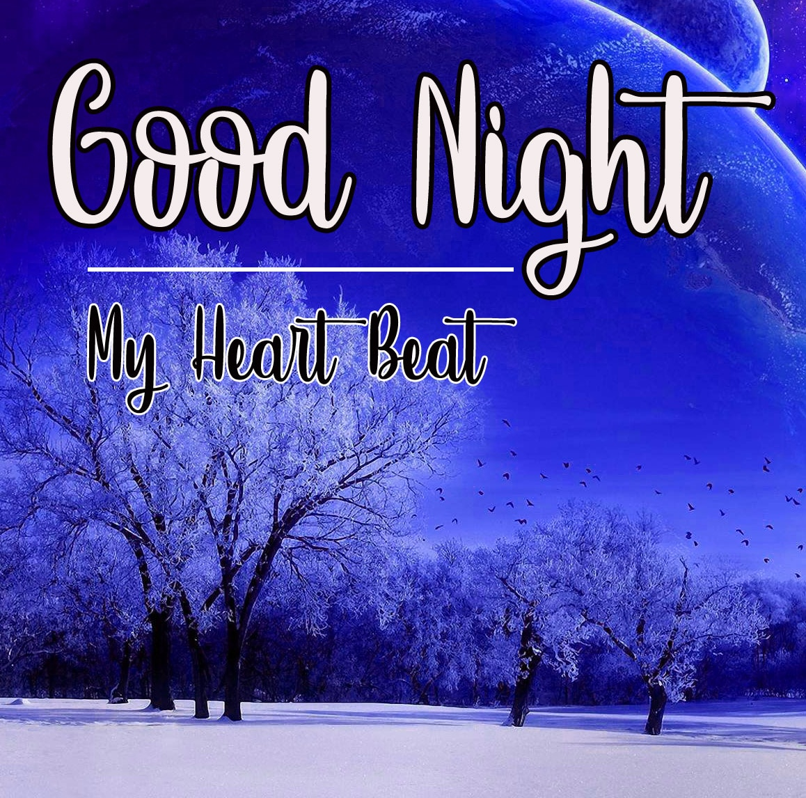 Good Night photo 1