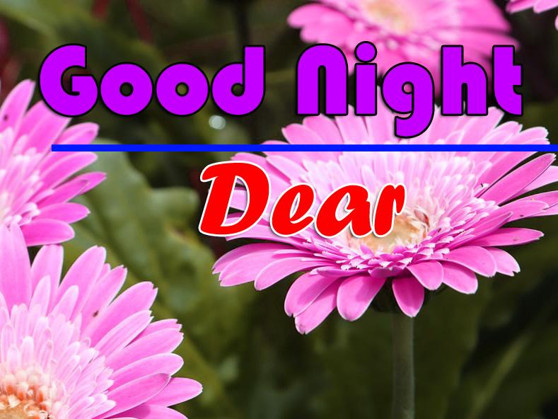 Good Night photo 3 1