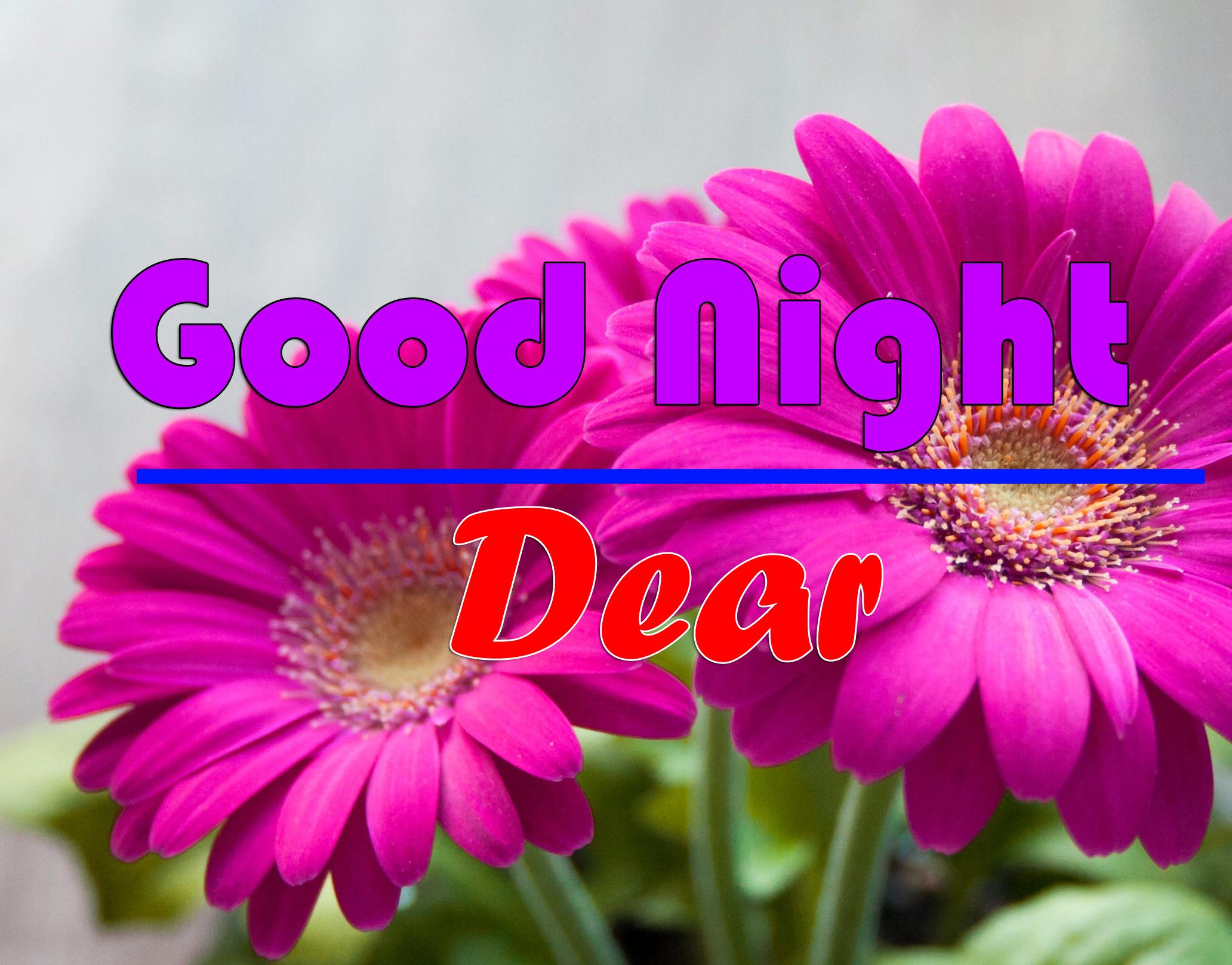 Good Night photo 4 1