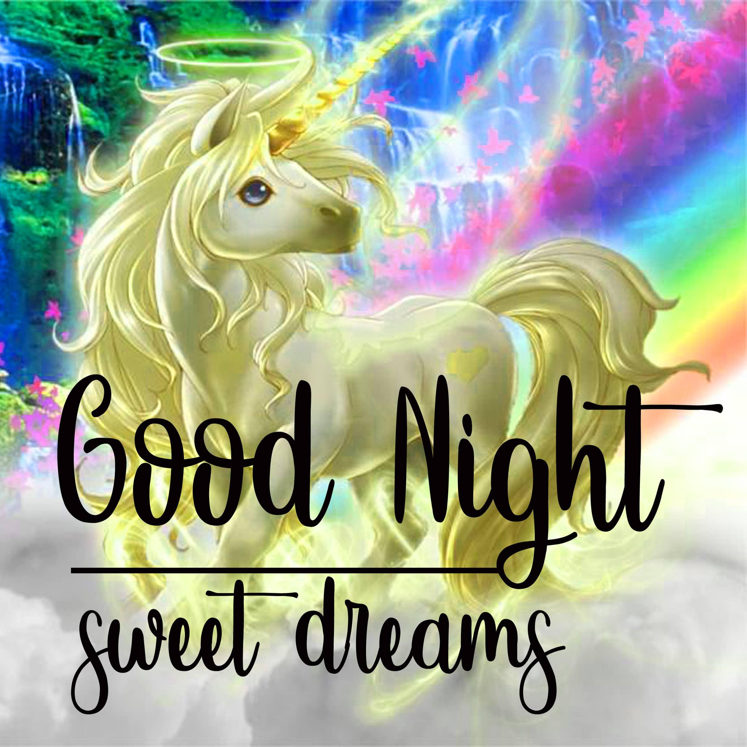 Good Night photo 4