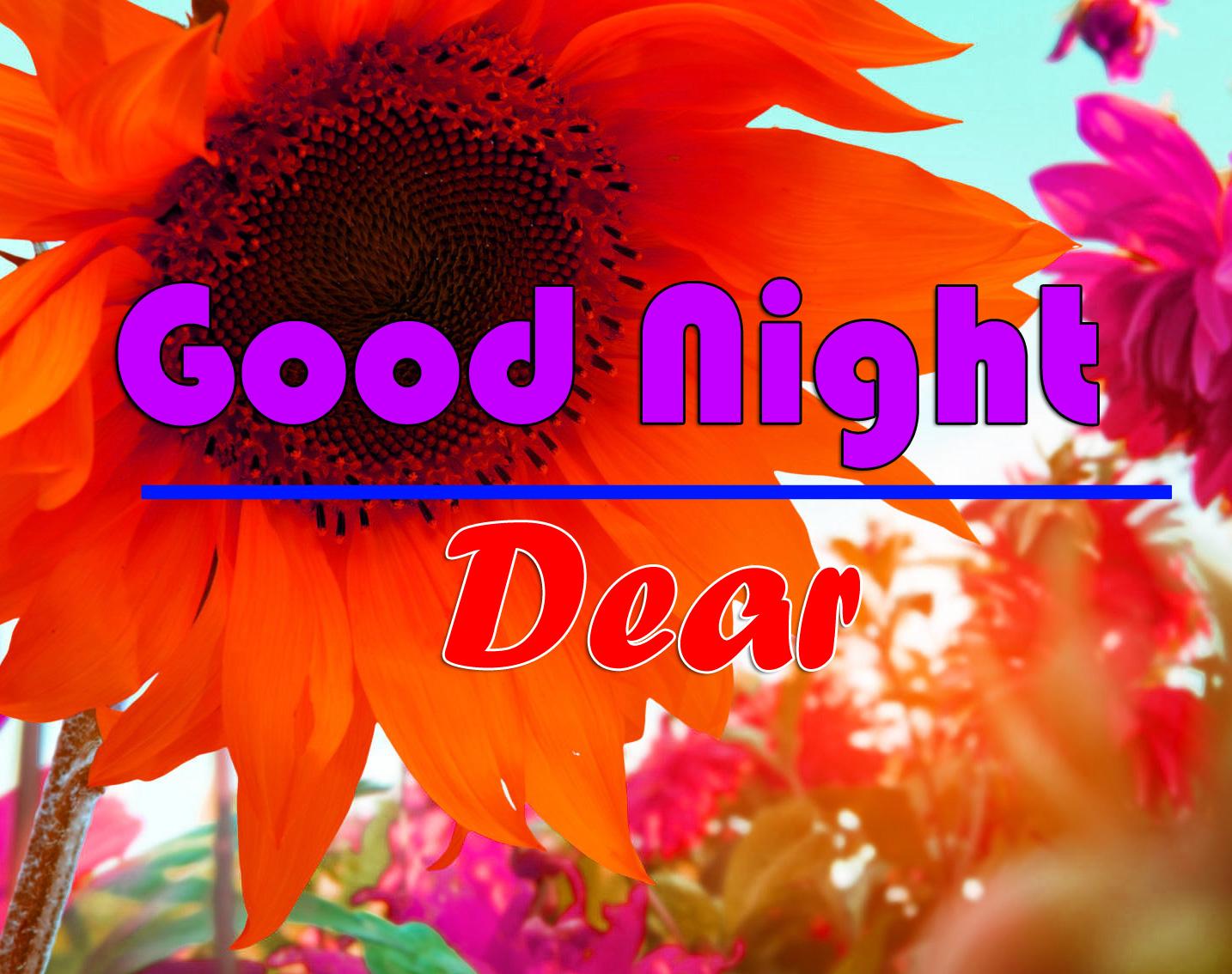 Good Night photo 5 1
