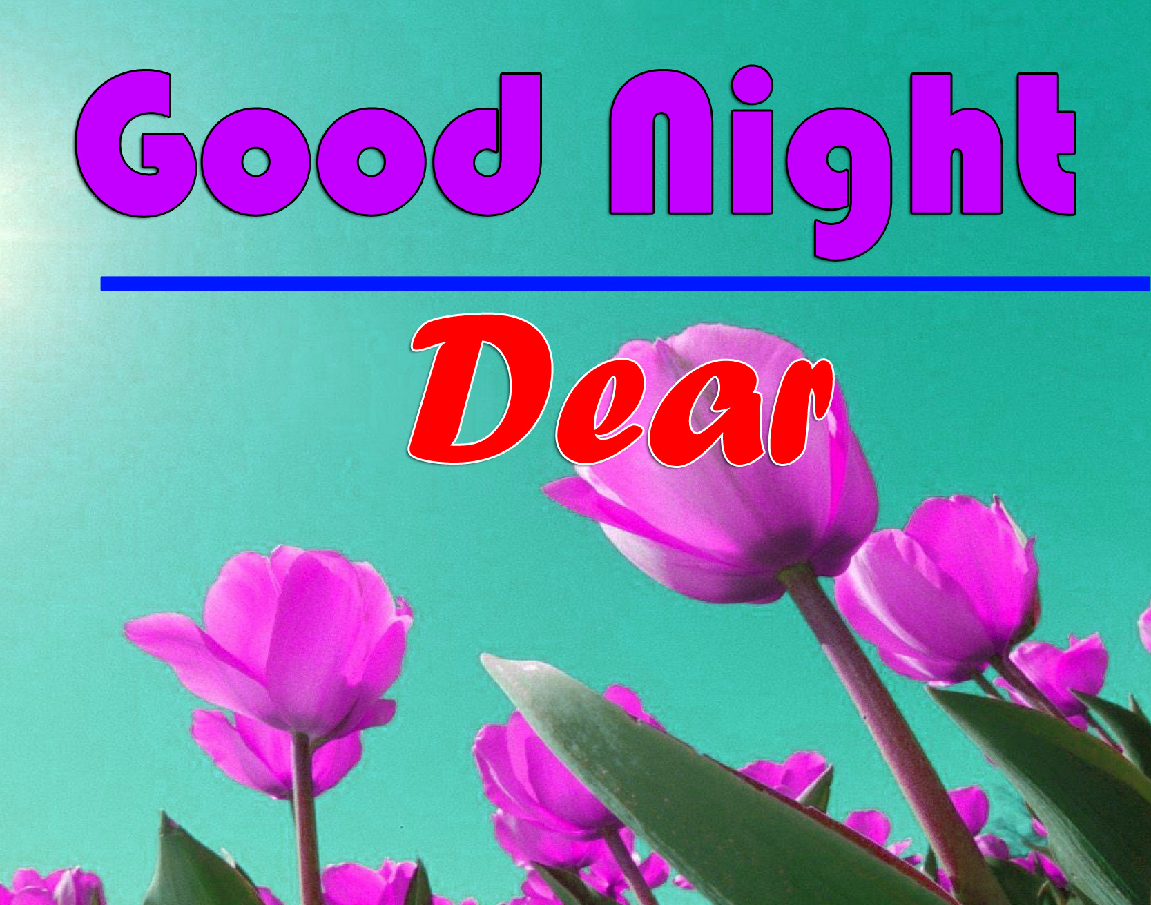 Good Night photo 6 1