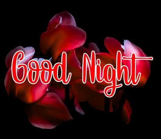 Good Night photo 7