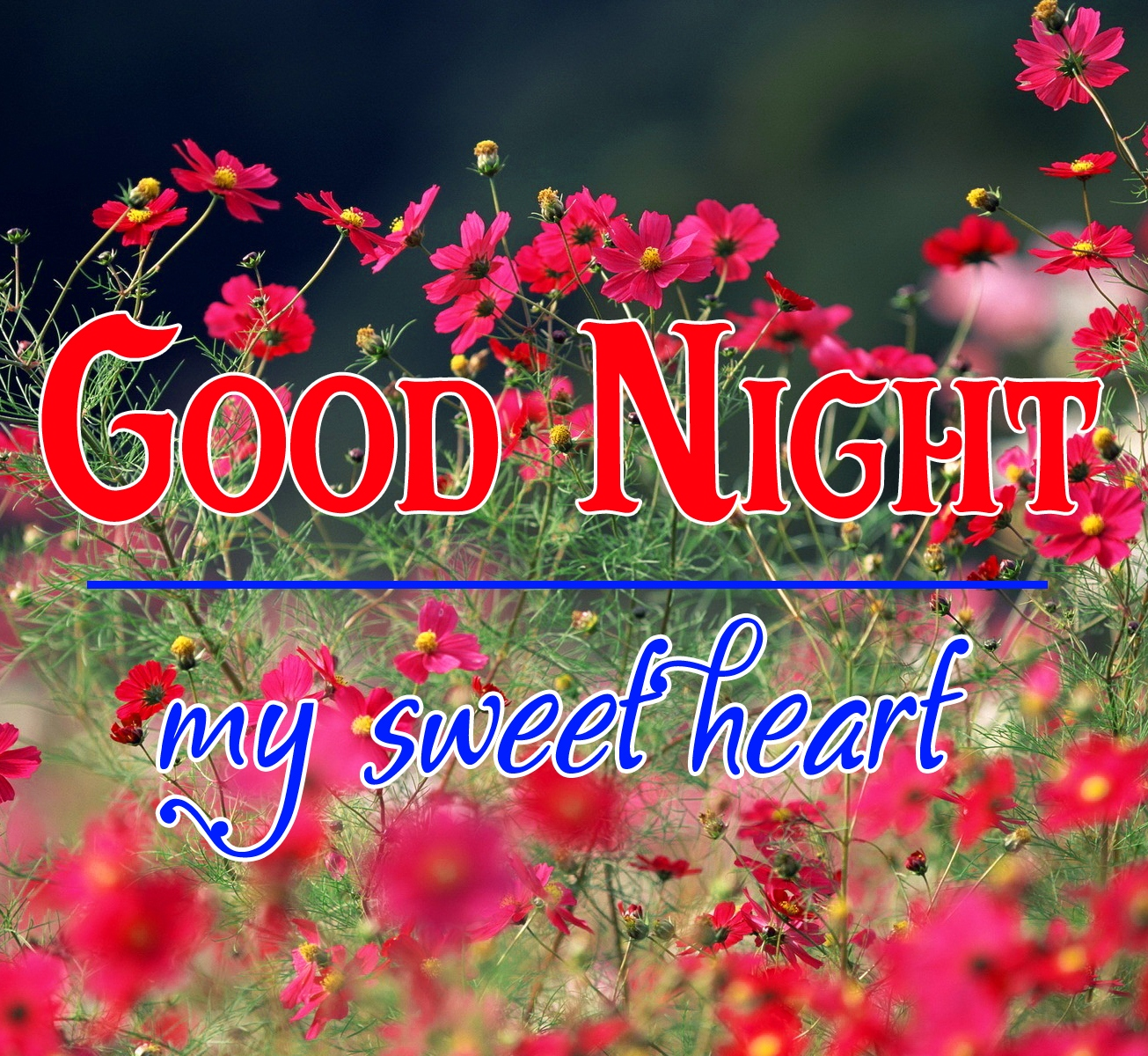 Good night wallpaper hd 106