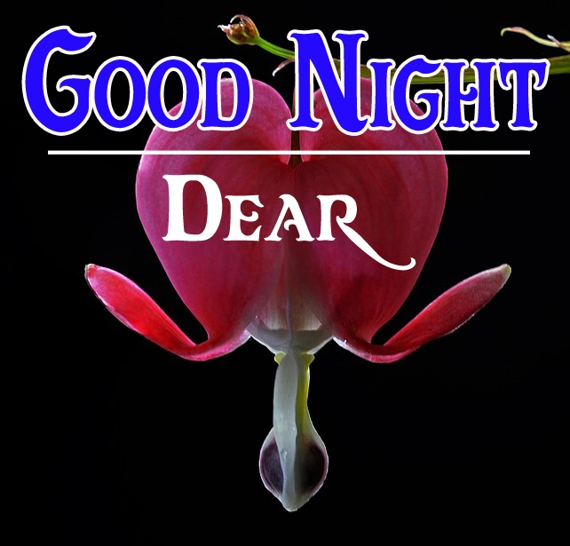 Good night wallpaper hd 110
