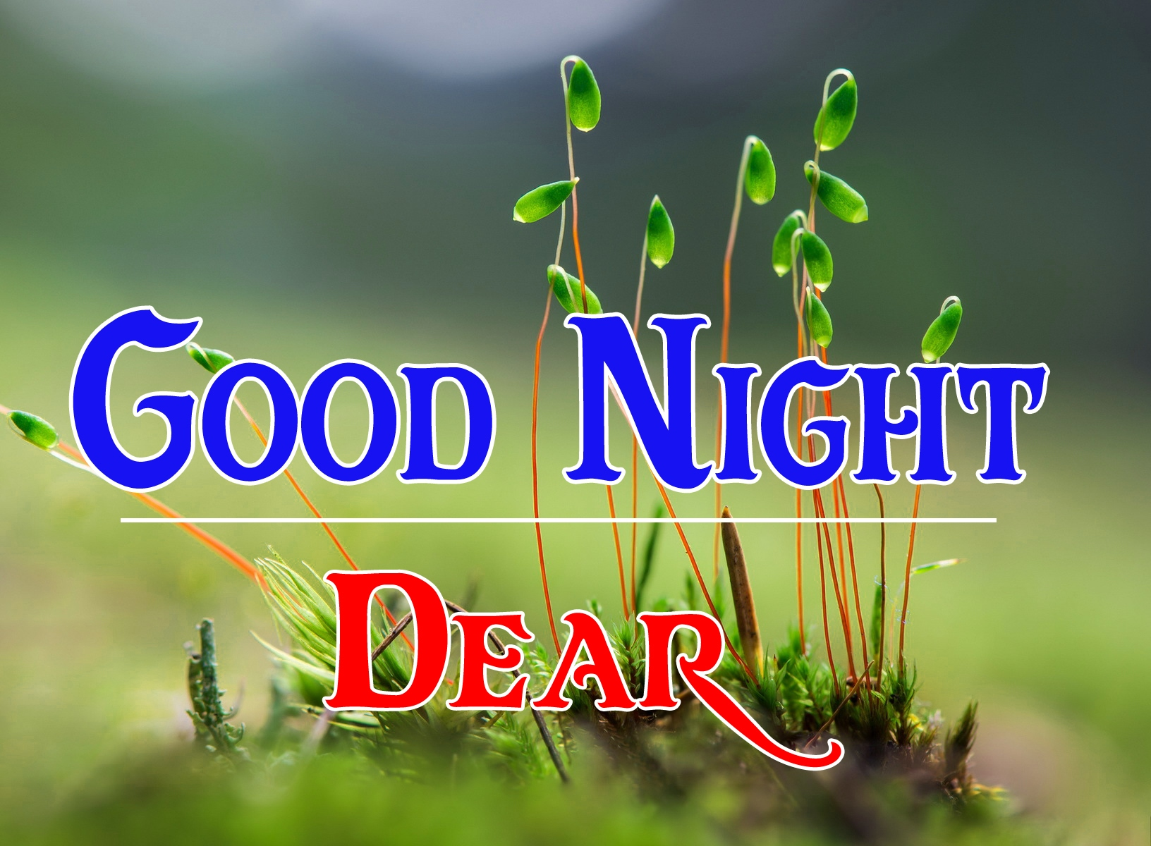 Good night wallpaper hd 45 1