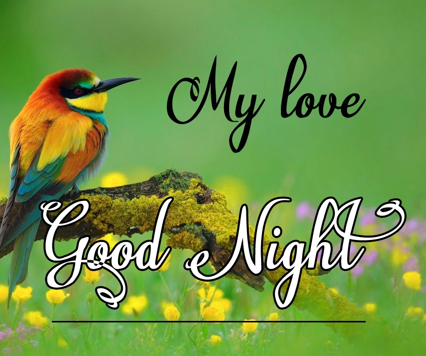 Good night wallpaper hd 7 1