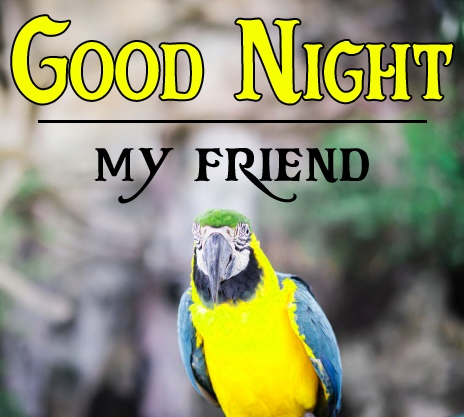Good night wallpaper hd 91 1