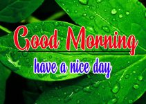 1383+ Good morning images Pics for him with love