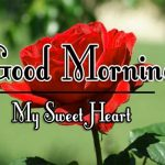 Red Rose Good Morning Images 30