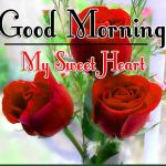 Red Rose Good Morning Images 33