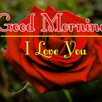 Red Rose Good Morning Images 42