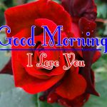 Red Rose Good Morning Images 43
