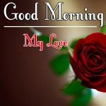 Red Rose Good Morning Images 57