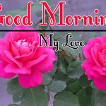 Red Rose Good Morning Images 64
