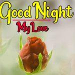 Rose Free Romantic Good Night Pics Download