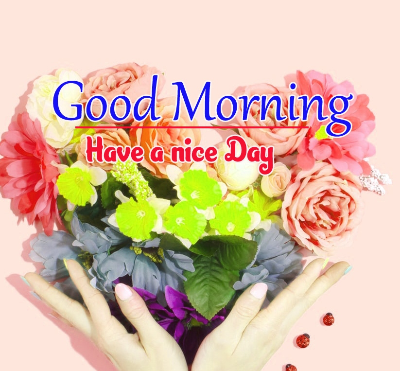 Special Good Morning Wishes Images 4