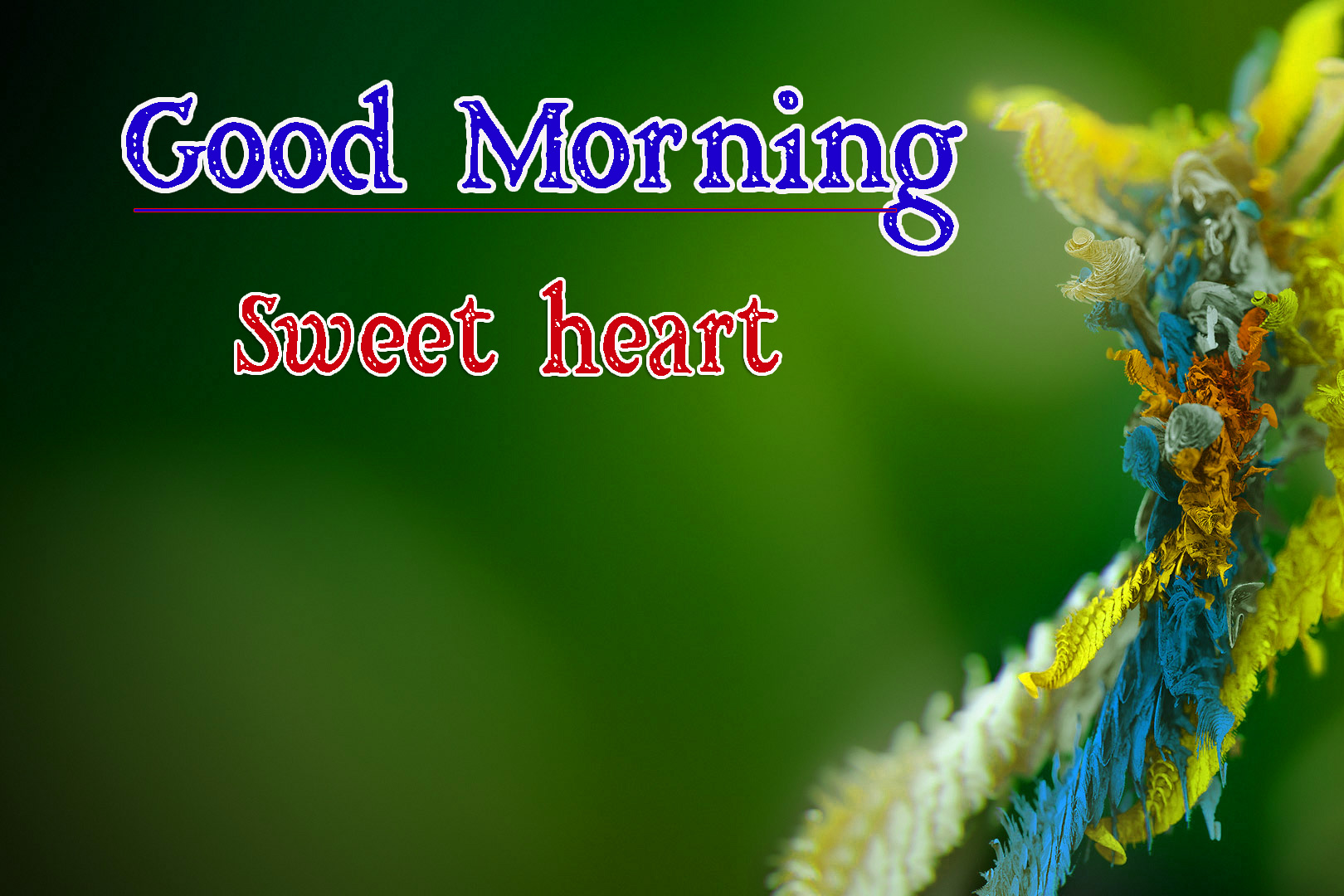 Very Good Morning Images Pics Download Free