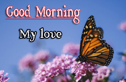 1080p Very Good Morning Images Photo Download