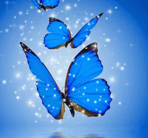 Whatsapp DP Wallpaper Pics With Butterfly