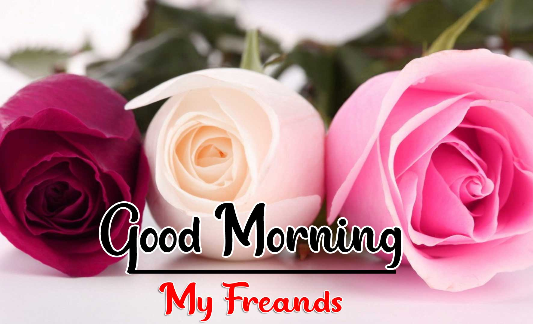 Beautiful Good Morning Wallpaper 12