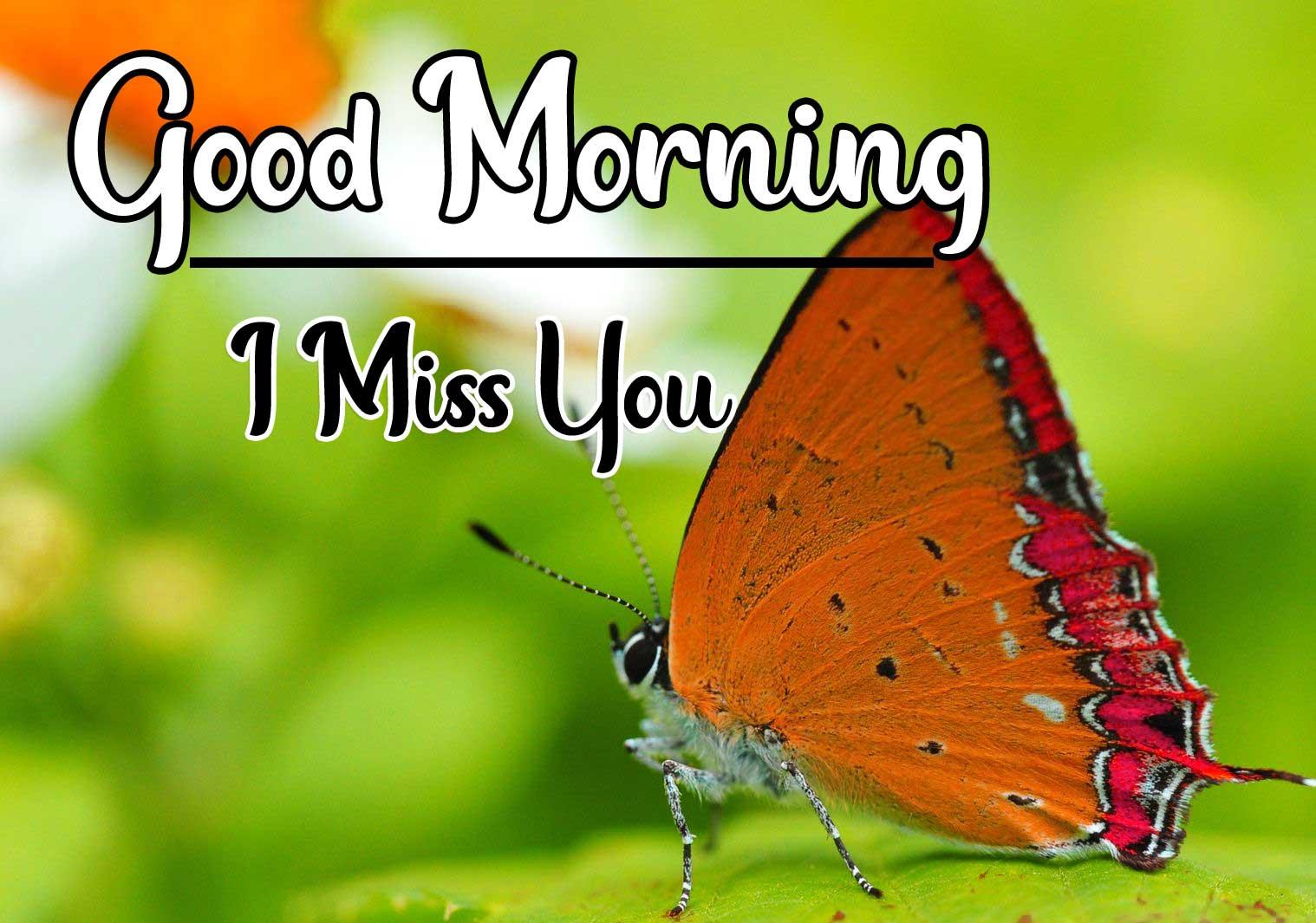 Beautiful Good Morning Wallpaper 16 4