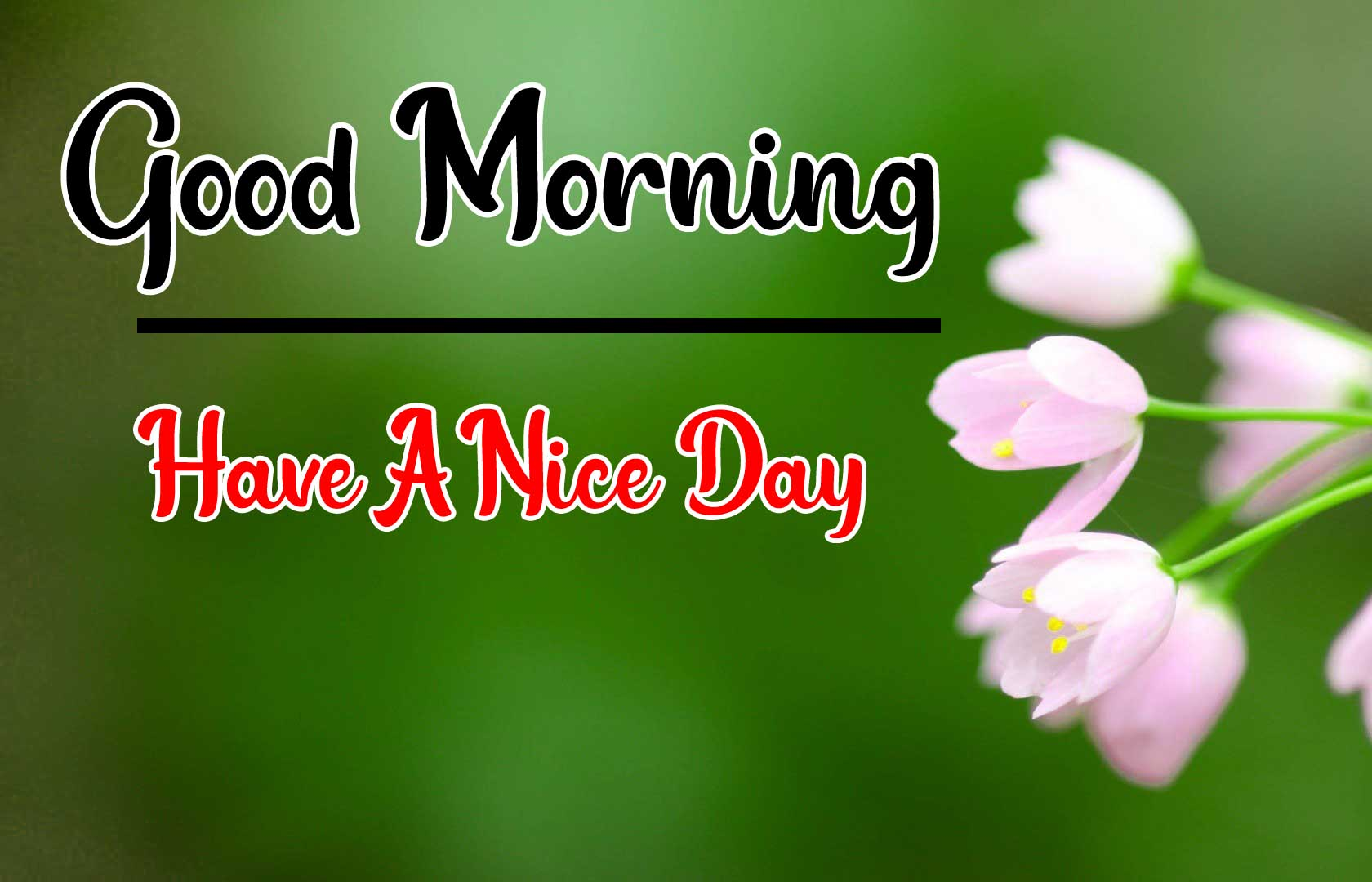 Beautiful Good Morning Wallpaper 22