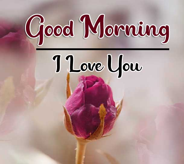 Beautiful Good Morning Wallpaper 23 4