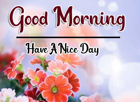 Beautiful Good Morning Wallpaper 24 4