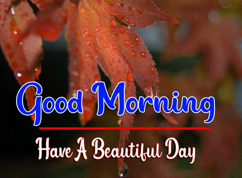 Beautiful Good Morning Wallpaper 24