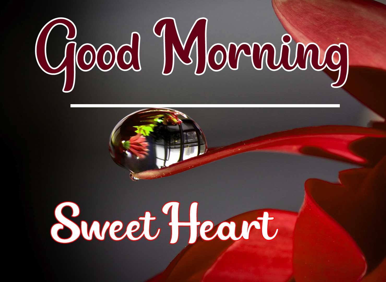 Beautiful Good Morning Wallpaper 27 4