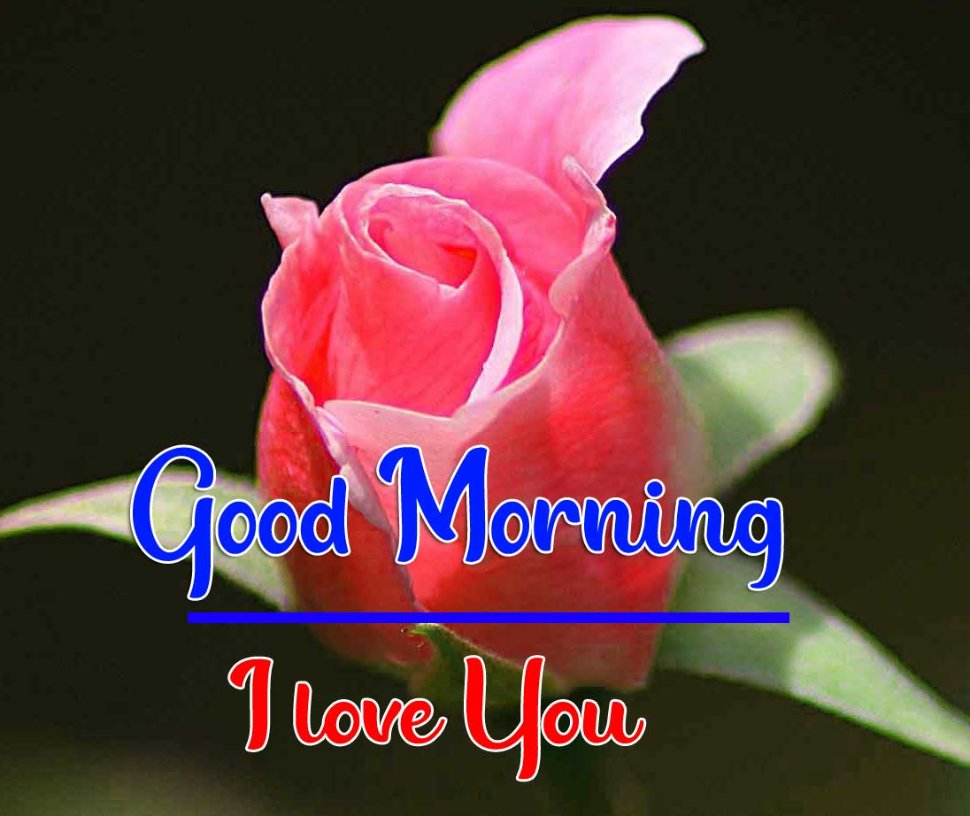 Beautiful Good Morning Wallpaper 28