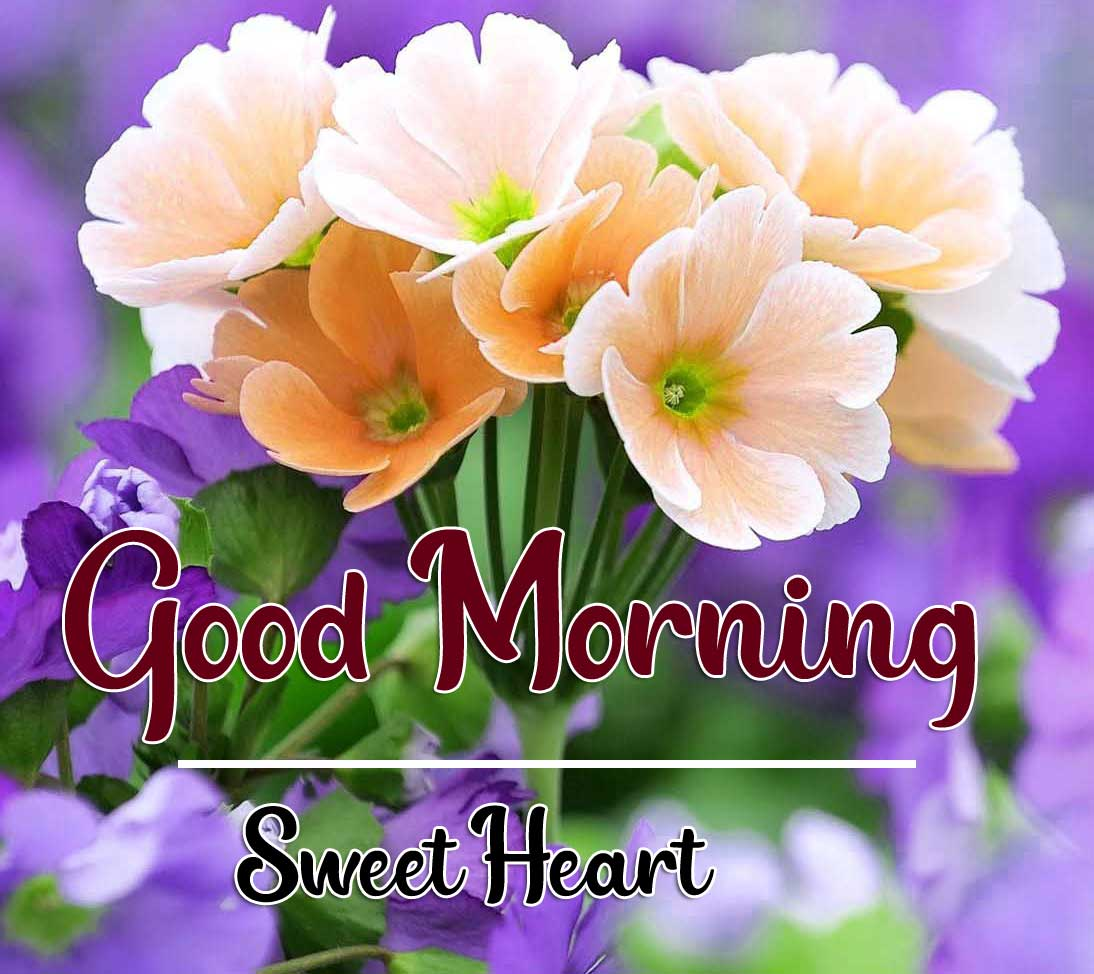 Beautiful Good Morning Wallpaper 3 4