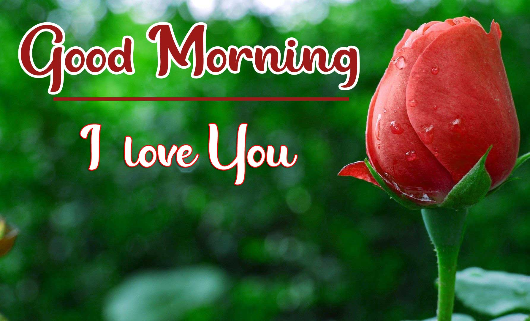 Beautiful Good Morning Wallpaper 36
