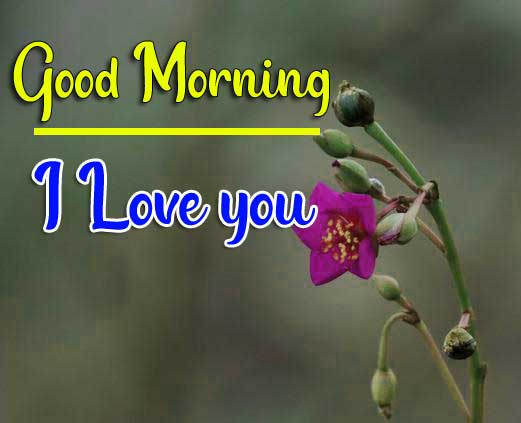 Beautiful Good Morning Wallpaper 48