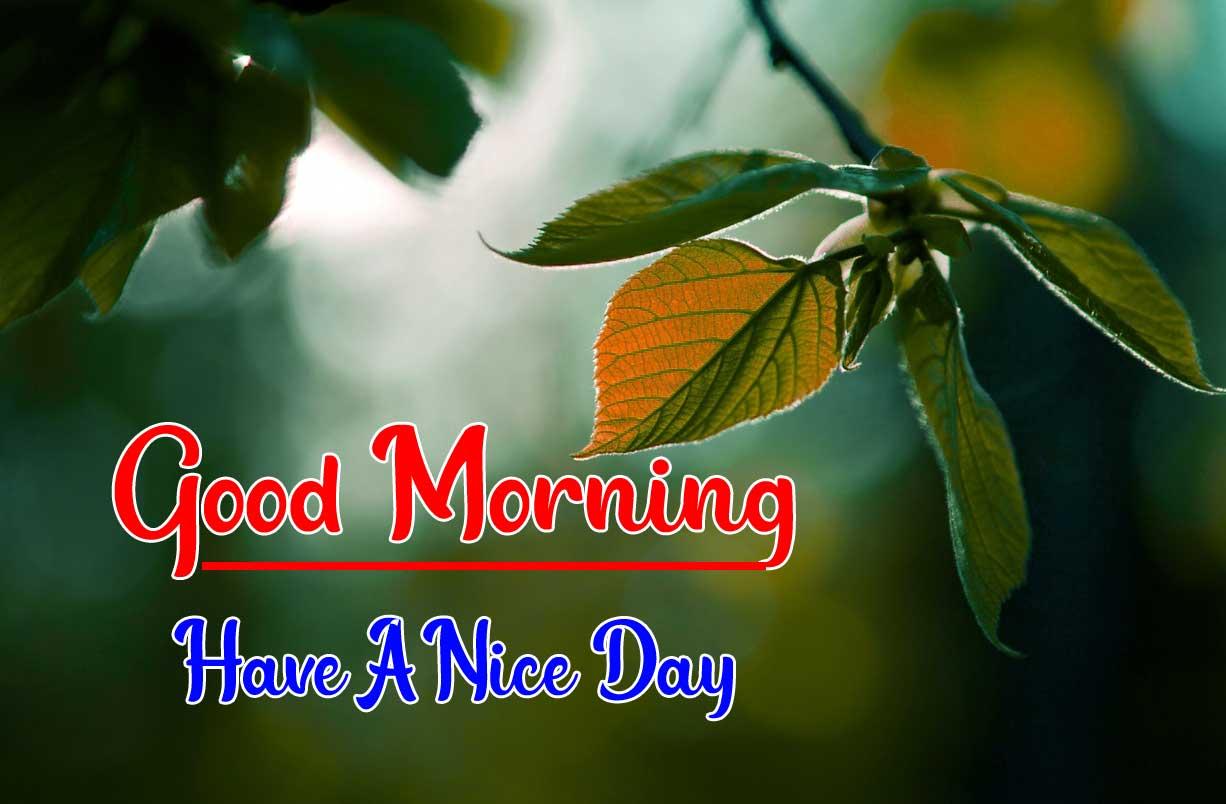 Beautiful Good Morning Wallpaper 51