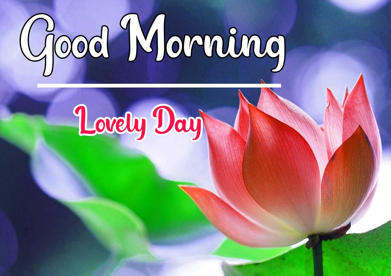 Beautiful Good Morning Wallpaper 54 2